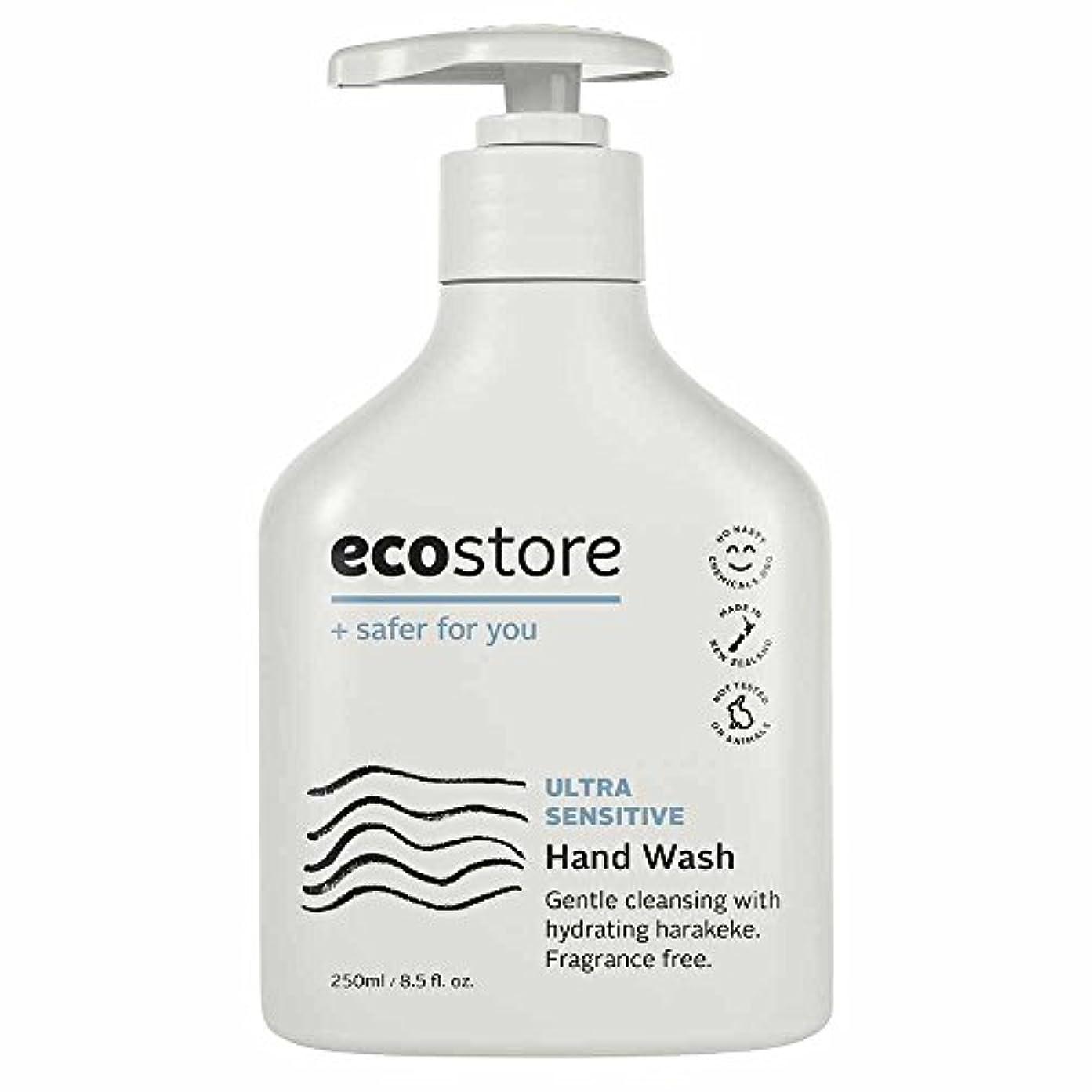 爬虫類底計算可能ecostore(エコストア) ハンドウォッシュ 【無香料】 250ml 液体タイプ