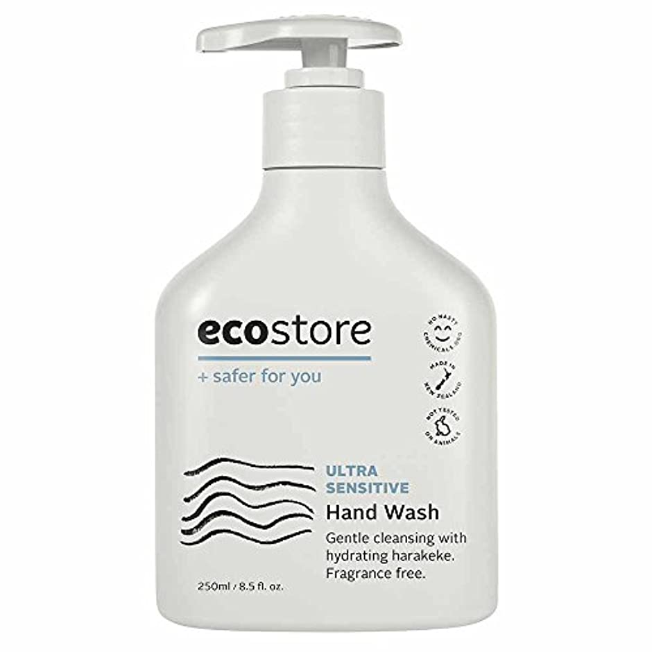 引き出す露骨な擬人化ecostore(エコストア) ハンドウォッシュ 【無香料】 250ml 液体タイプ