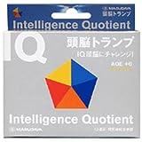 IQ 頭脳 トランプ