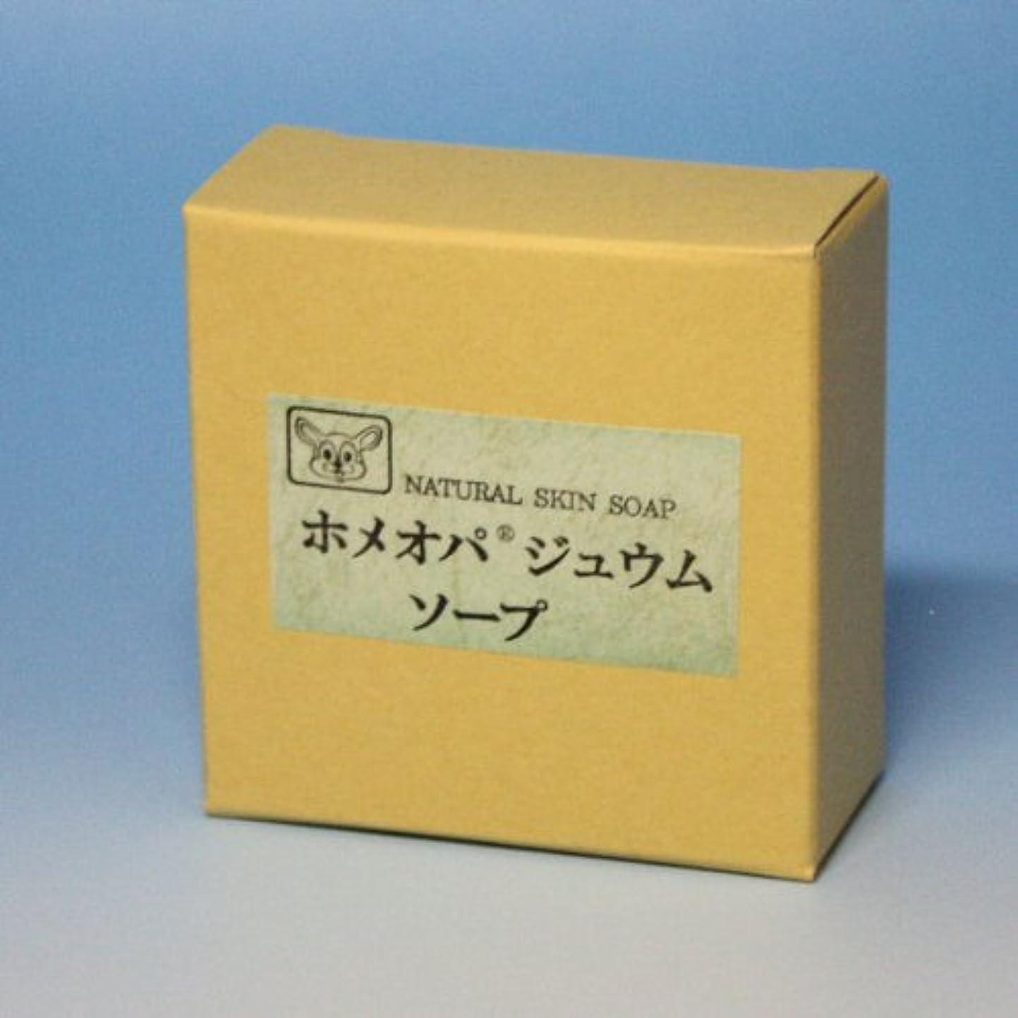 算術パンフレット。ホメオパジュウムソープ 100g