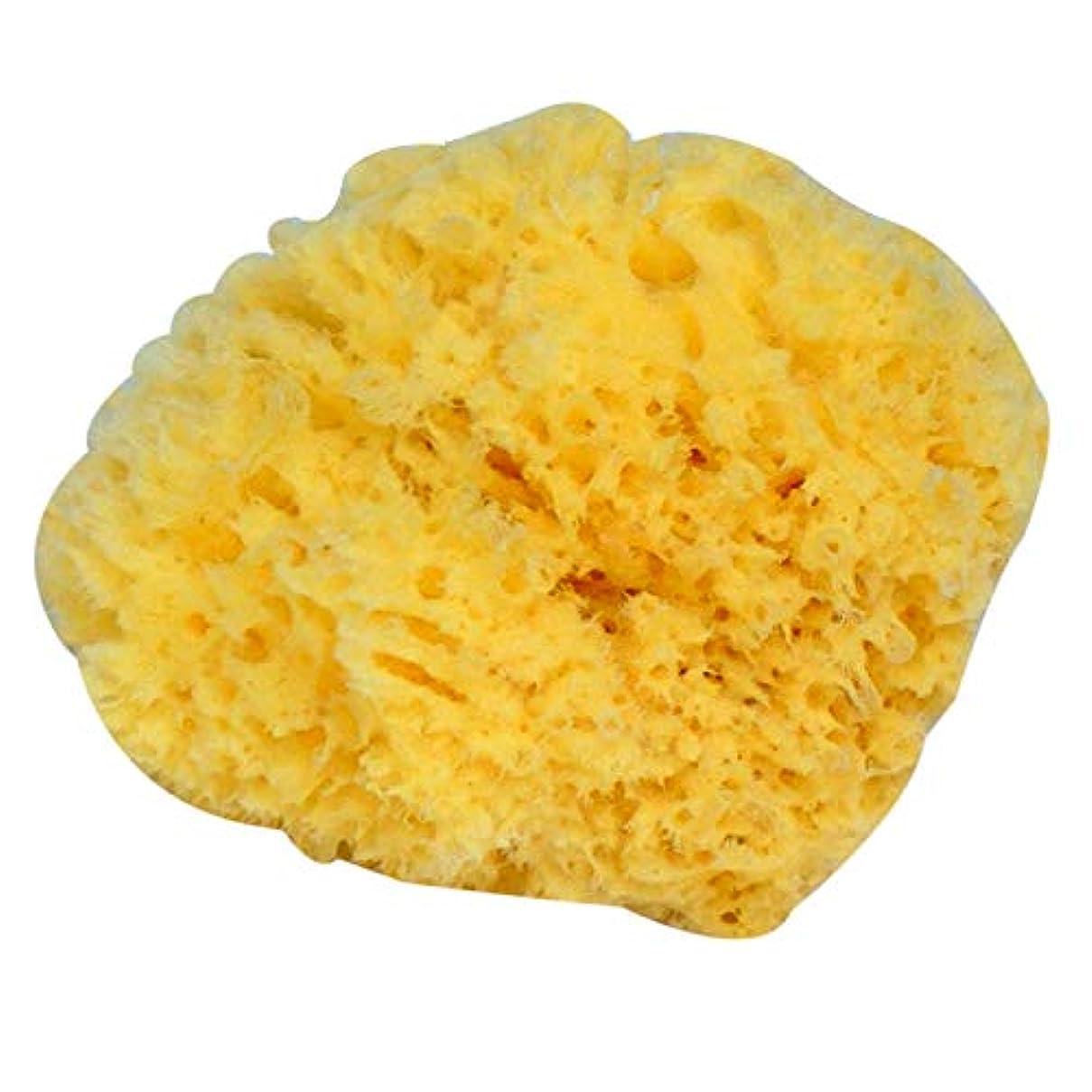 寄生虫カジュアル時々時々SODIAL 自然な黄色い海草のスポンジ。 お風呂、シャワー、ボディケア用。柔らかく荒いが、皮膚を刺激しない。