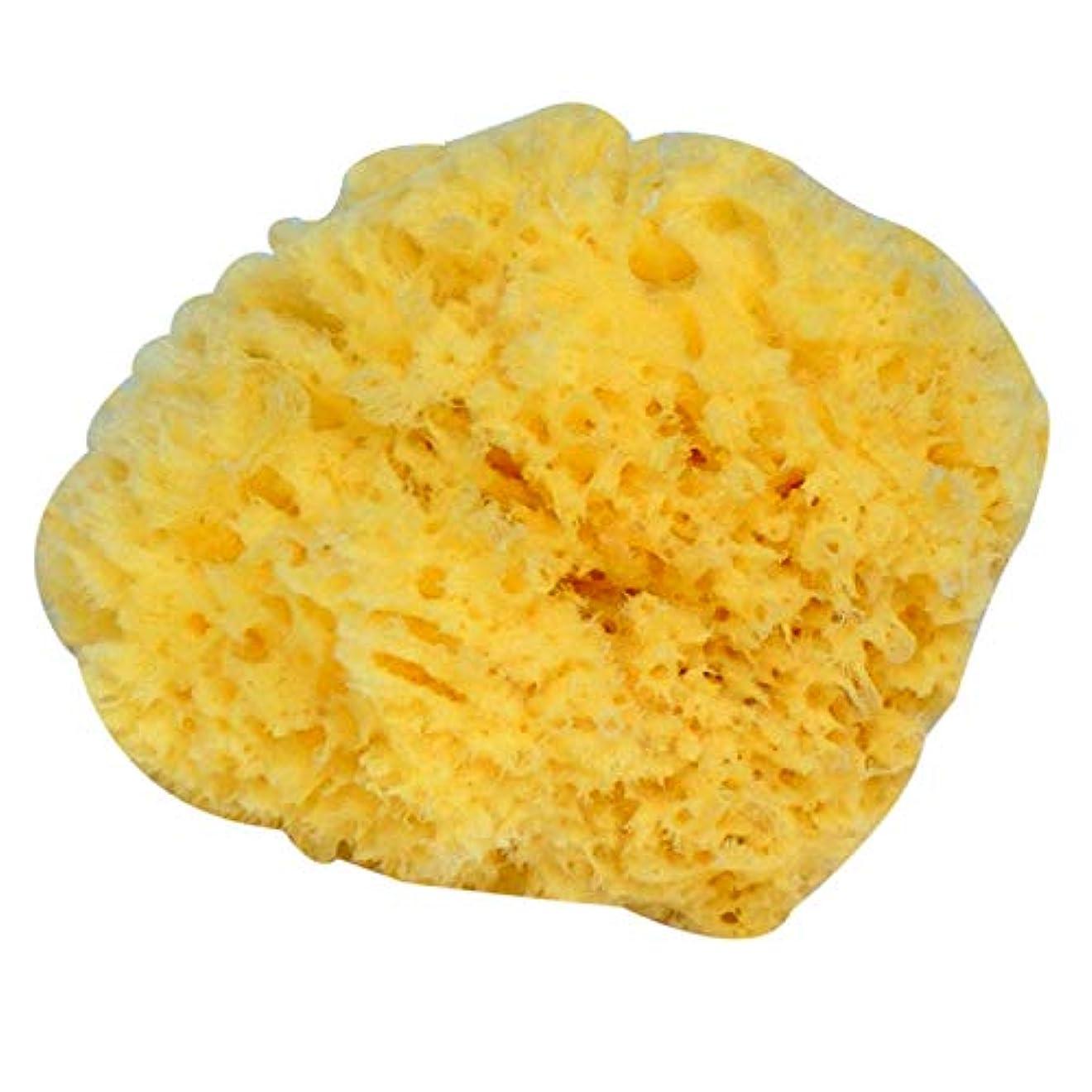 とげのあるファックス割れ目SODIAL 自然な黄色い海草のスポンジ。 お風呂、シャワー、ボディケア用。柔らかく荒いが、皮膚を刺激しない。