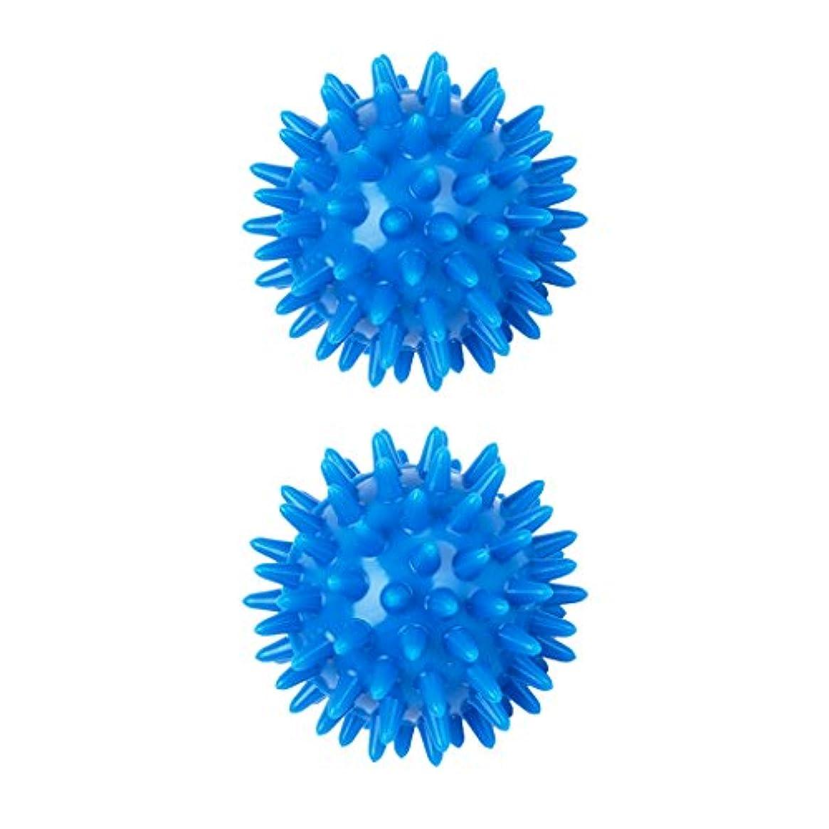 指導するきらめき退化する2個 足 足首 背中 マッサージボール 筋肉緊張和らげ 血液循環促進 5.5cm PVC製 ブルー