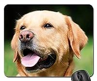 犬用マウスパッド 1122-004 260*210*3 mm