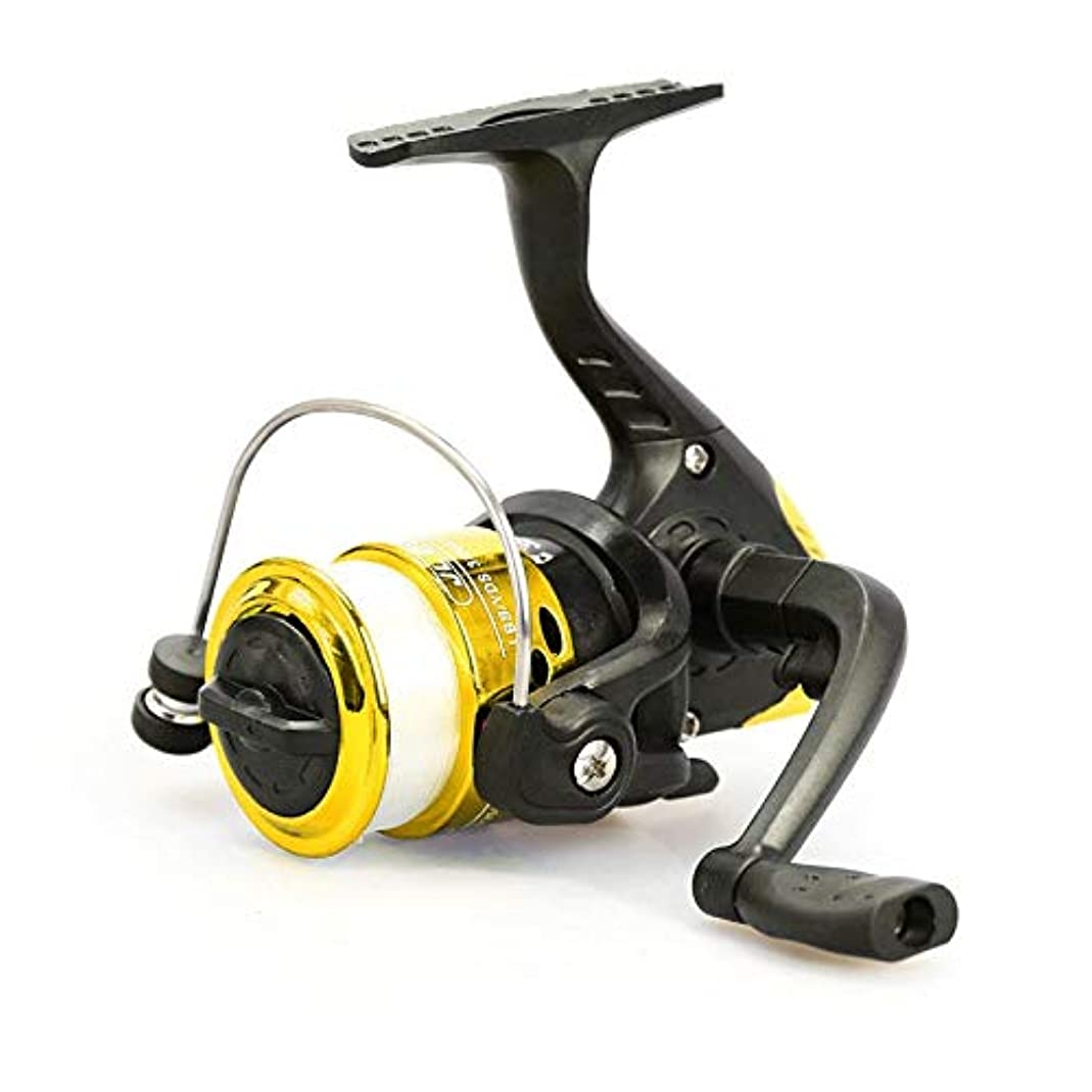 を除く暴徒販売員WTYD アウトドア釣り用品 JL200めっきプラスチック3玉軸受ハンドル釣りスピニングリール透明ライン アウトドアに使う
