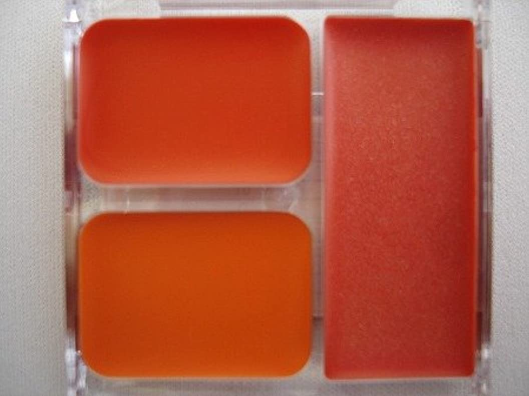 確認細分化するシンボルリップ パーソナルカラー スプリング向き
