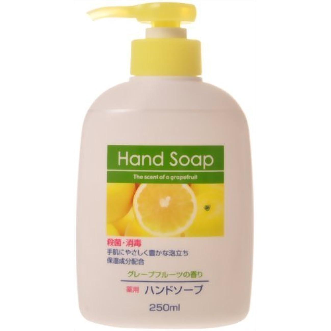 液化する見えないはさみ薬用ハンドソープ グレープフルーツの香り 本体 250ml 【まとめ買い240個セット】