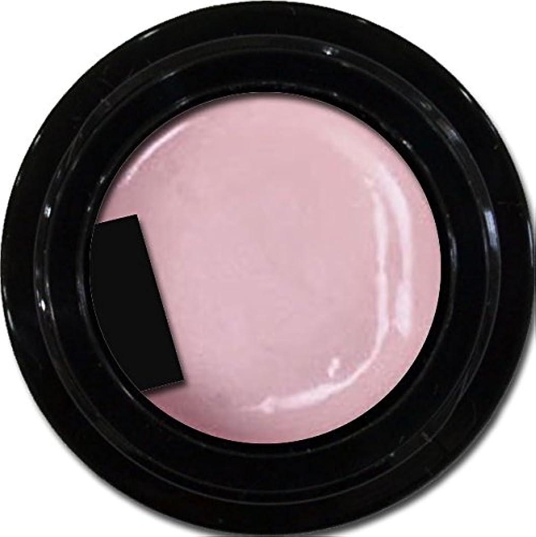 トロリーバス簡潔な葉を拾うカラージェル enchant color gel P502 VenetianRose 3g/ パールカラージェル P502ベネチアンローズ 3グラム