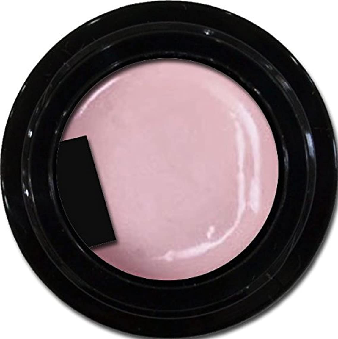 必要ないディレクトリウミウシカラージェル enchant color gel P502 VenetianRose 3g/ パールカラージェル P502ベネチアンローズ 3グラム