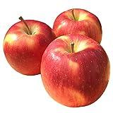 Su-eat 訳あり 葉とらず 朝どれ りんご シナノドルチェ 減農薬 長野県産 約5キロ
