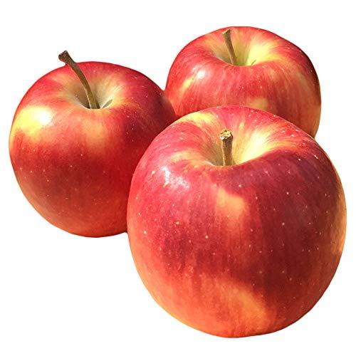 Su-eat 特選 葉とらず 味極み りんご つがる 減農薬 長野県産 約10キロ