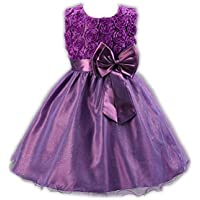 Baby Girl Floral Rose Party Dress Big Bow Sleeveless Princess Dress Tutu Lace Wedding Dresses Outfit