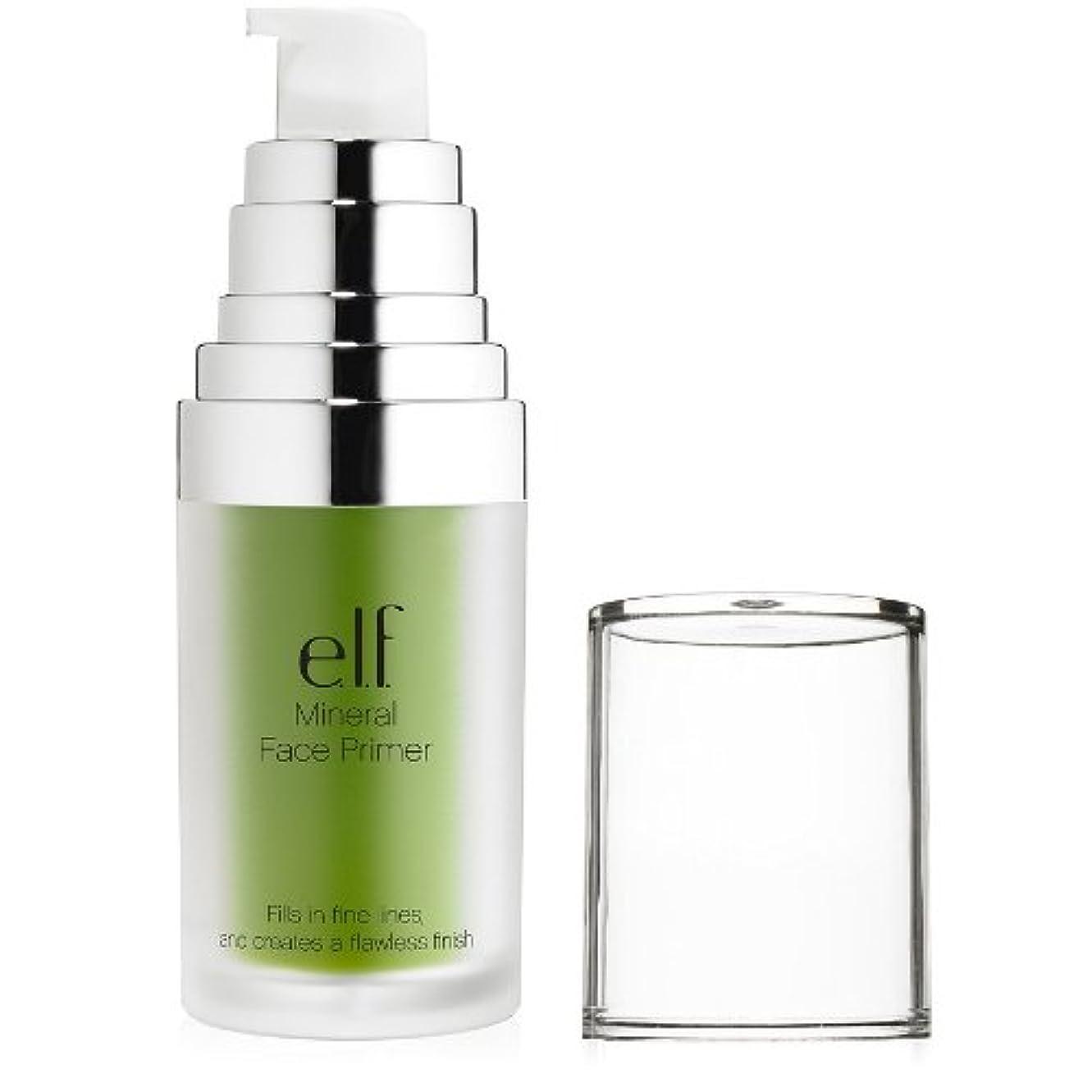 無効裂け目冷蔵庫(6 Pack) e.l.f. Studio Mineral Infused Face Primer - Tone Adjusting Green (並行輸入品)