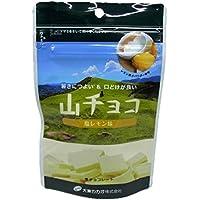 大東カカオ 山チョコ(塩レモン味)50g×1個