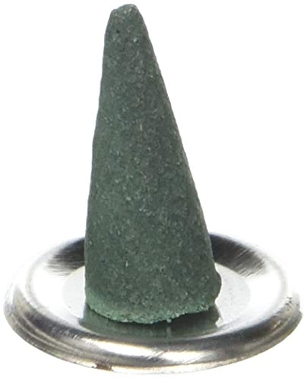 壮大電報販売員アロマセラピーHosley Highly Fragranced Spiritual Incense Cones 180パック、Infused with Essential Oils。結婚の理想は、特別なイベント、アロマセラピー...