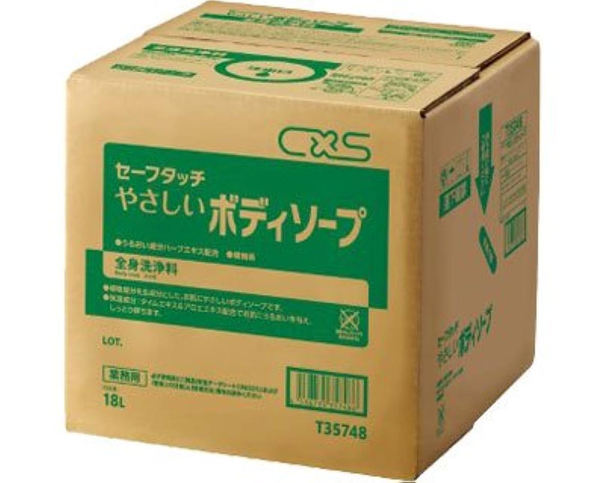 埋め込む適用済み関税セーフタッチ やさしいボディソープ 18L T35748 (ディバーシー) (清拭消耗品)