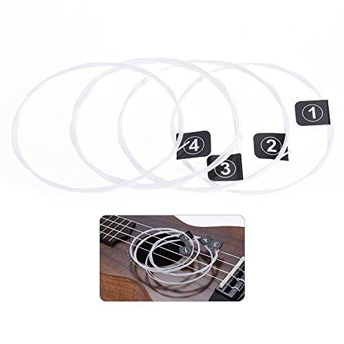 ammoon Orphee KX80 ウクレレ弦 セット 4本 (.024-.026) Note/inch/mm: A/024/0.60; E/031/0.78; C/037/0.95; G/026/0.65 文字列 弦楽器アクセサリ