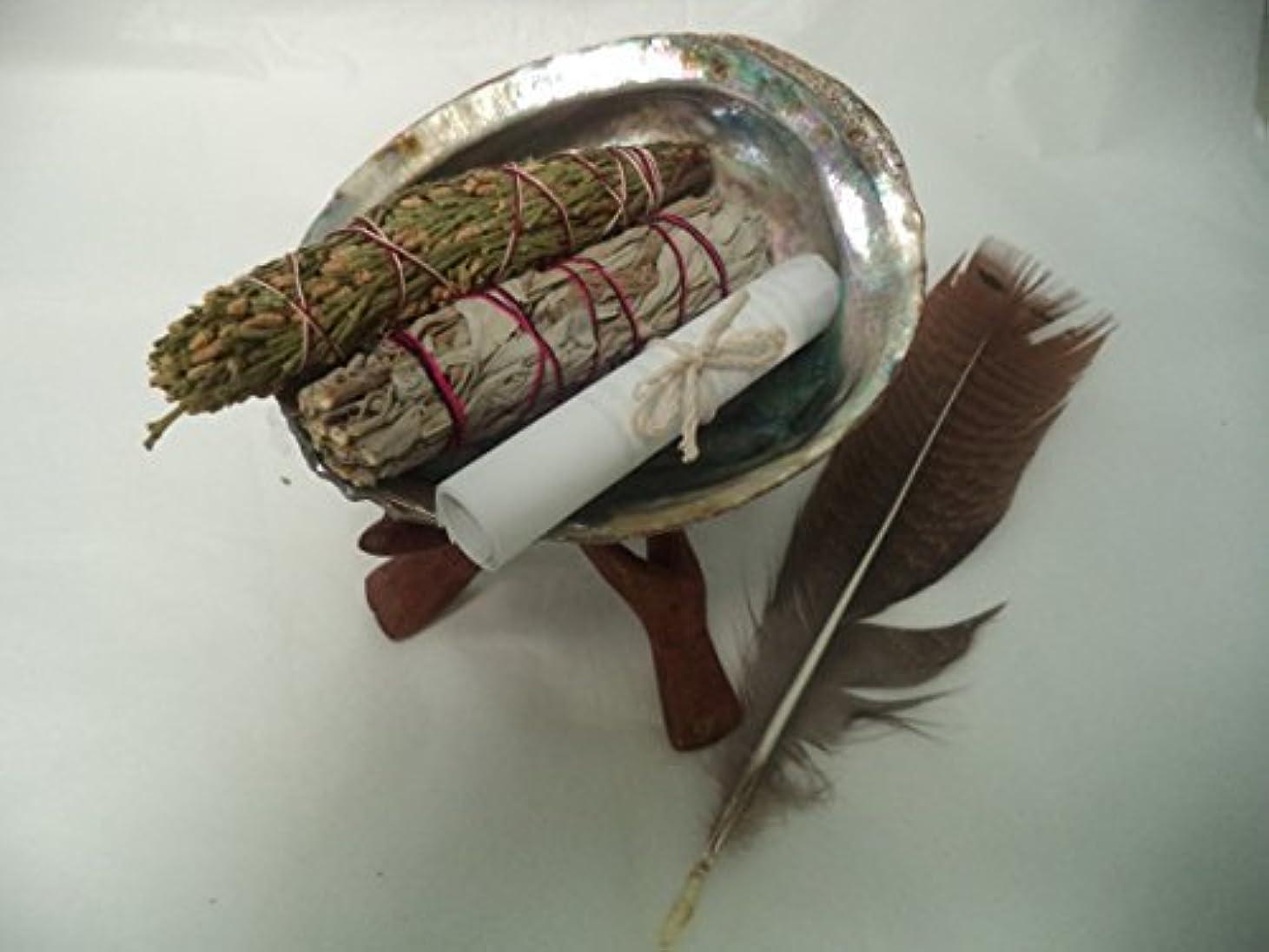 メドレースパイ音節Abalone Shell, 6
