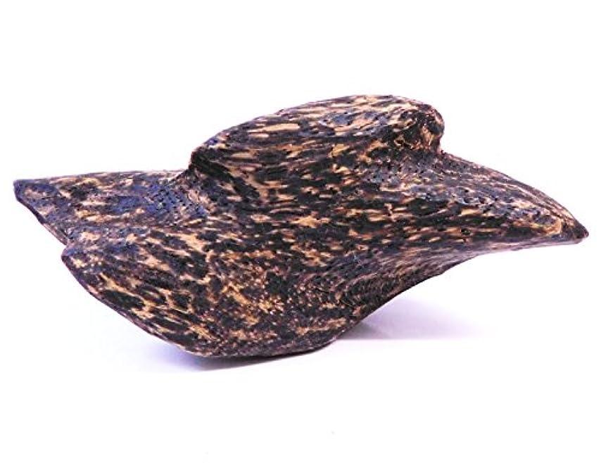 考古学的なジェーンオースティン作物越南沈香 香木 ベトナムじんこう 浄化用 お香 空間浄化 50g