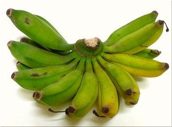 石垣島産の「島バナナ」1~3房(約1,2~1,5kg前後)