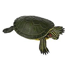 Safari Incredible Creatures ( インクレディブル クリーチャーズ ) ミシシッピーアカミミガメ 269529