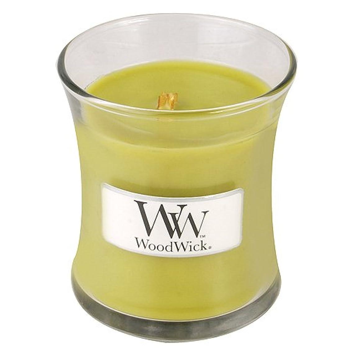 素朴なファン兵器庫イブニングBonfire Mini WoodWick Candle