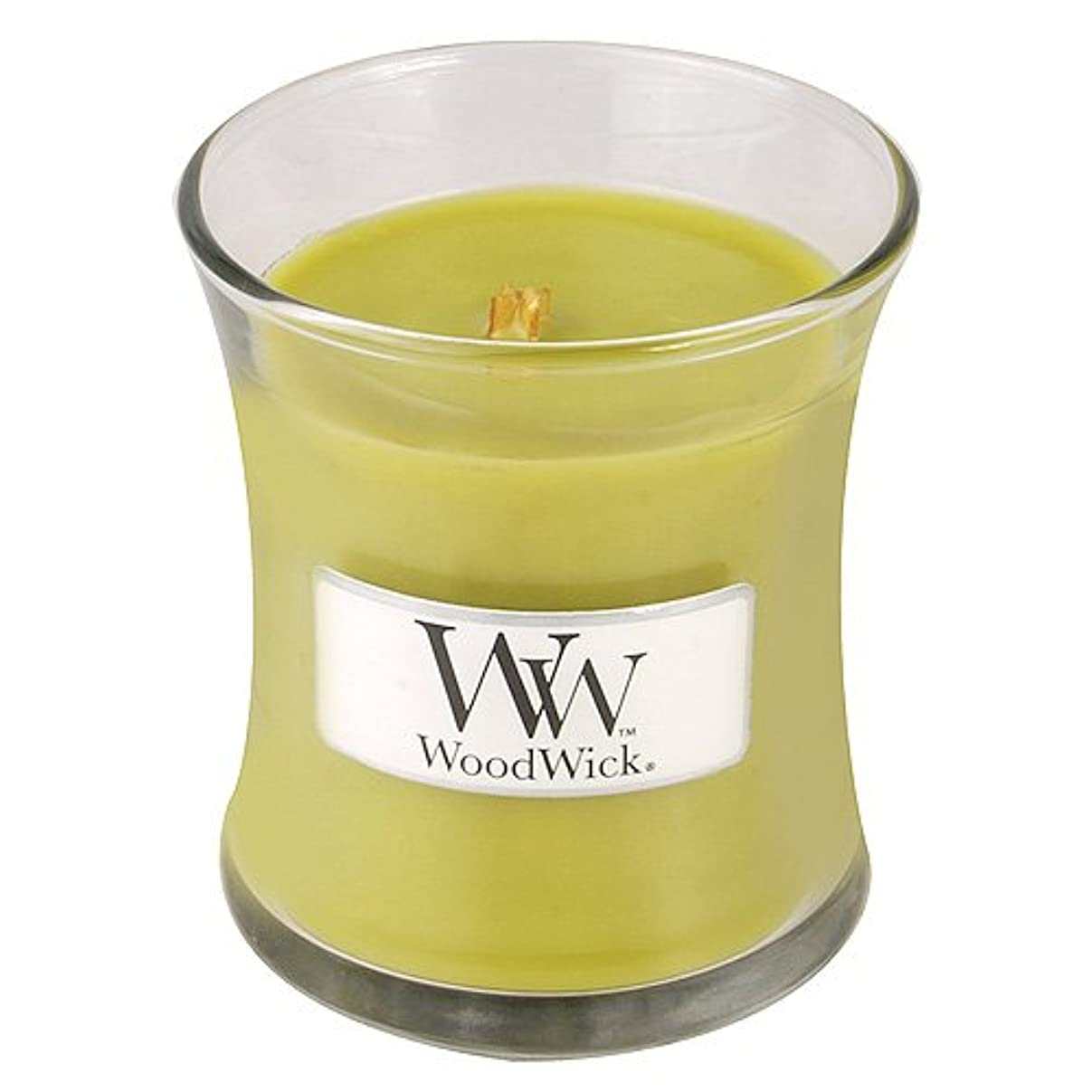 イブニングBonfire Mini WoodWick Candle