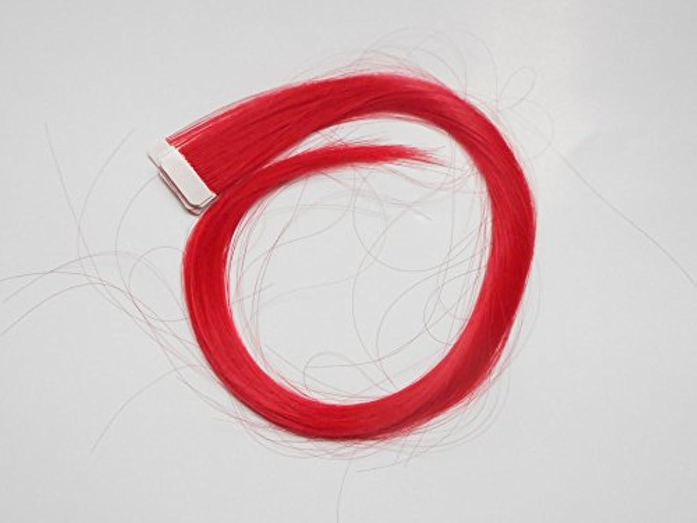 美容師開梱ポンド簡単エクステ テープエクステンション シールエクステンション 10枚入 10色カラー (レッド)