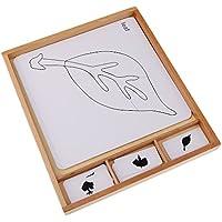 SONONIA 子供 モンデッソリ 学習カード 幼稚園 教育援助 おもちゃ 全2選択 - 植物