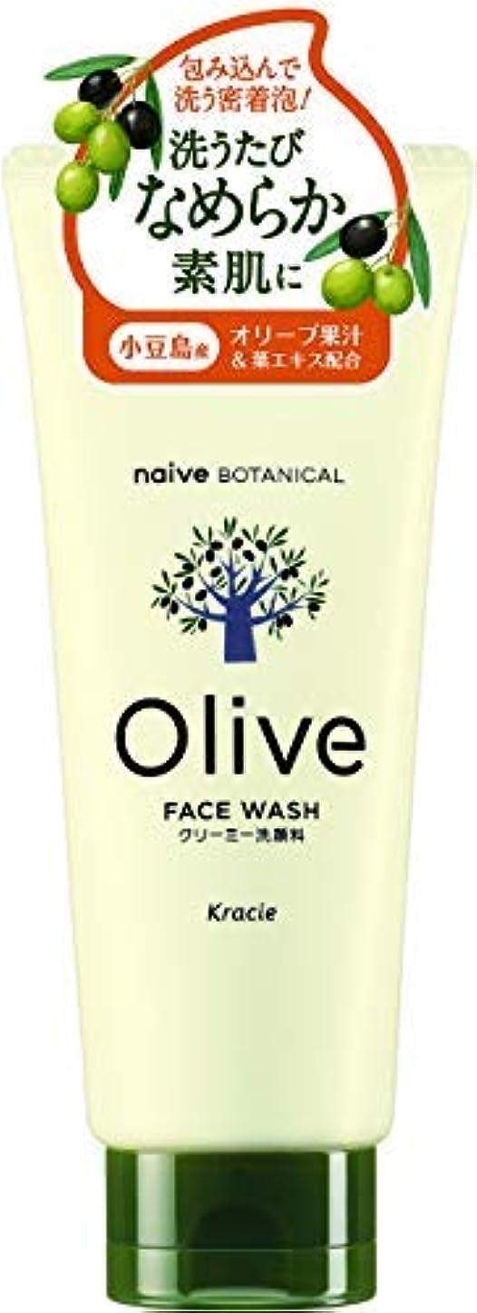 資産許さない重要性ナイーブ ボタニカル クリーミー洗顔料 × 36個セット