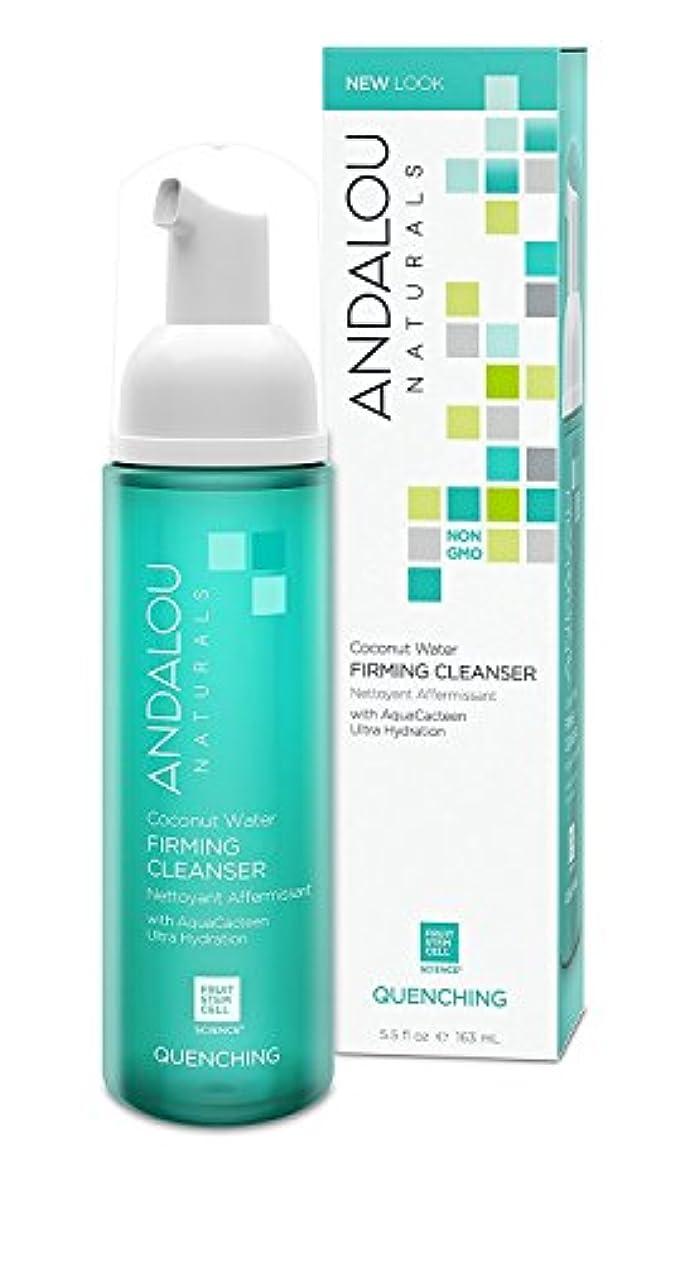消毒剤機械間オーガニック ボタニカル 洗浄料 洗顔料 洗顔フォーム ナチュラル フルーツ幹細胞 「 CW クレンザー 」 ANDALOU naturals アンダルー ナチュラルズ
