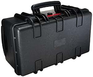 Amazonベーシック カメラバッグ ハードカメラケース Lサイズ