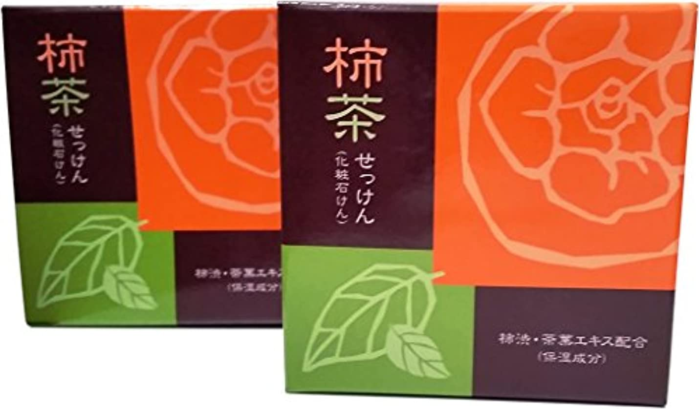 噴火繁殖論争の的柿茶せっけん 地の塩社 2個セット 80g×2 KTソープ