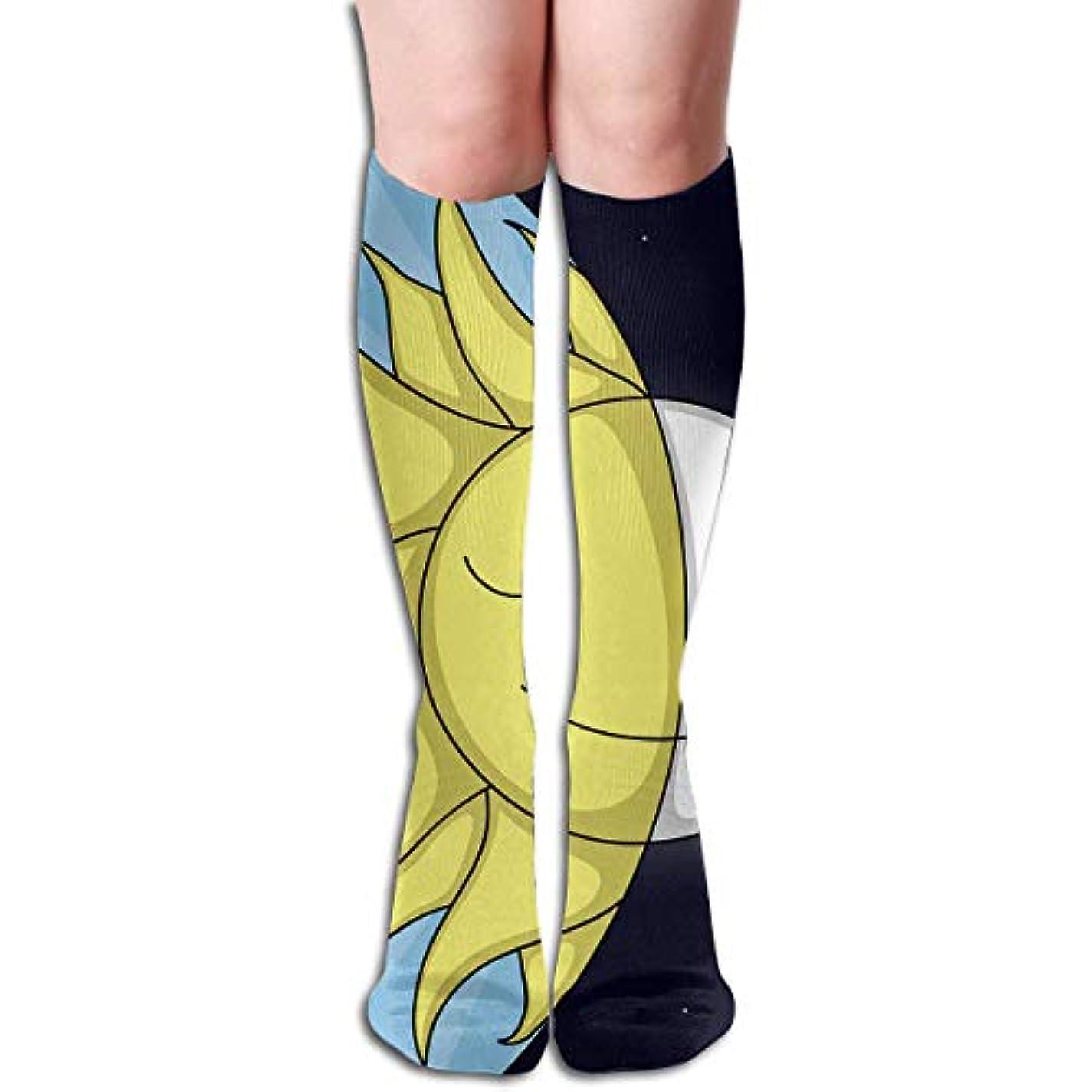 誤見通しバンジョーqrriy日と夜チューブストッキングレディース冬暖かい膝ハイソックスブーツ靴下