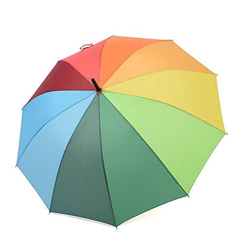 (レインブレース) Rainbrace 雨傘 レディース レインボー 二人傘 ジャンプ傘 虹色 アウトドア 傘 自動開き 耐風 10本骨 金属製フレーム メタルシャフト 虹色 プラスチックハンドル ポンジー生地 マルチカラー