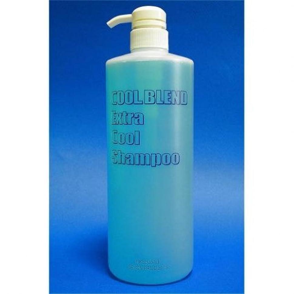 バブル民間テーマクールブレンド エキストラクール シャンプー 1000MLボトルポンプ式
