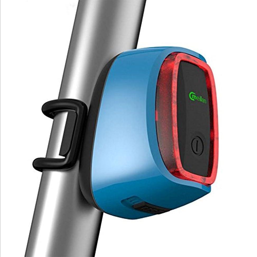 アンプ運賃調子RaiFu テールライト 自転車用 セーフティーライト スマート 自転車 テールライト 高輝度 充電式 16 LED ライト 6モード サイクリング 自転車 安全警告灯 軽量 ロードバイク マウンテンバイク 小型自転