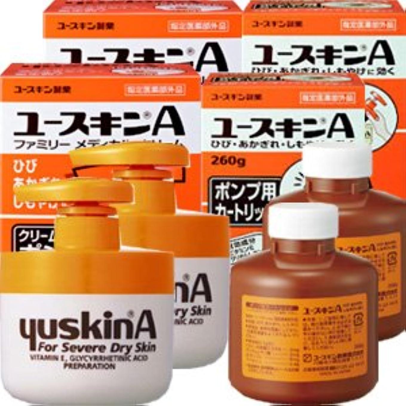 前提条件復活する生産性ユースキンA ポンプ 260gx2個+カートリッジ260gx2個 本体2個と詰替え2個セット