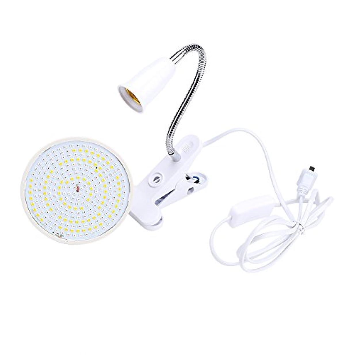 悪党子音手荷物3色 LEDライト プロ セラピー フェイス ボディケア 美容器具(02)
