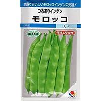【種子】つるありインゲン モロッコ 野菜 タキイのタネ