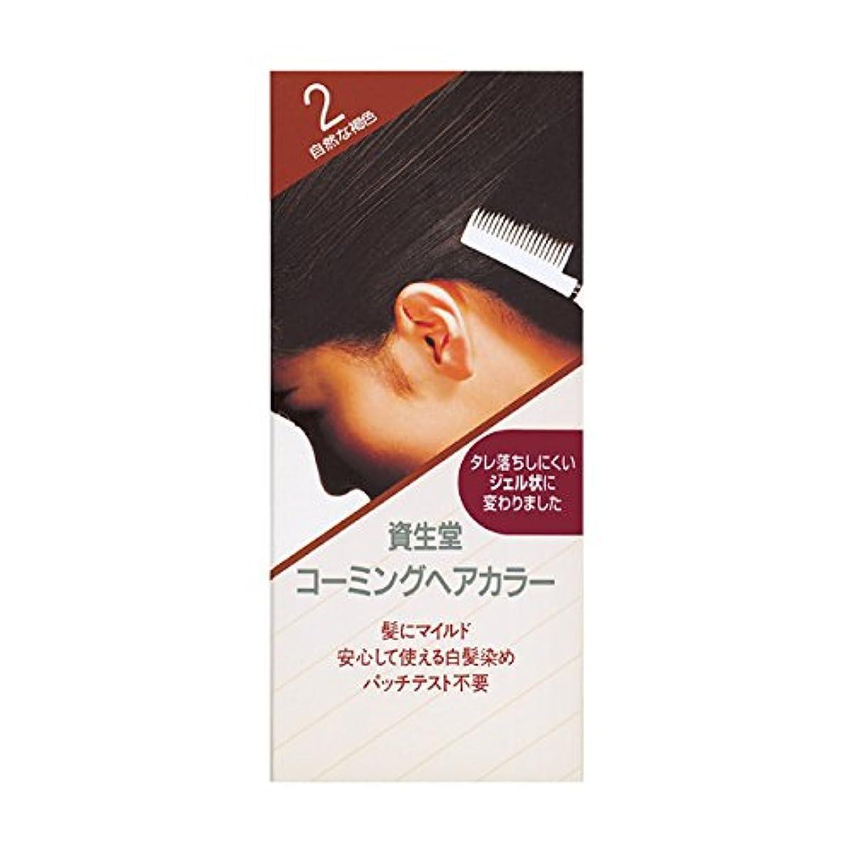 キャップ法的マントルヘアカラー コーミングヘアカラーa 2 150mL