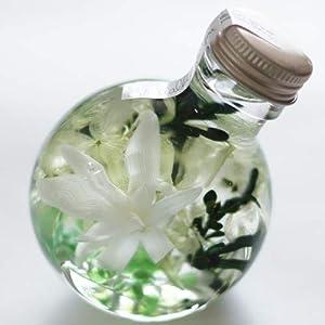 ハーバリウム 丸ボトル (チューベローズ ホ...の関連商品10