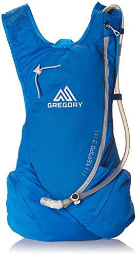 グレゴリー(GREGORY) テンポ3 ミストラルブルー 650100565 ミストラルブルー SM/MD