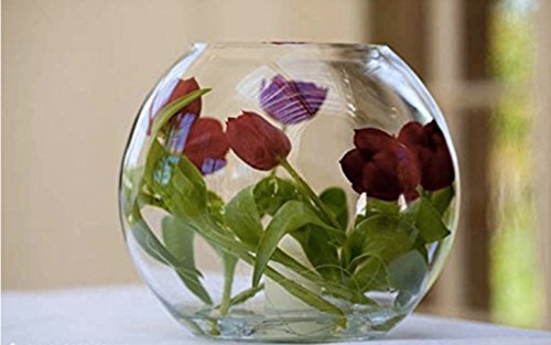 ガラス 容器 テーブル ボウル 金魚鉢 大 おしゃれ インテリア オブジェ アクアリウム テラリウム 花瓶 (15cm)