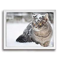 King Duck 猫 雪 フェイス 絵画 インテリア フレーム装飾画 アートポスター 壁画 アートパネル 壁掛け 木枠付き White