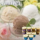 ガレー (Galler) プレミアム アイスクリーム ギフト セット【お中元 スイーツ アイス ランキング 人気商品】 (ガレープレミアムアイス)