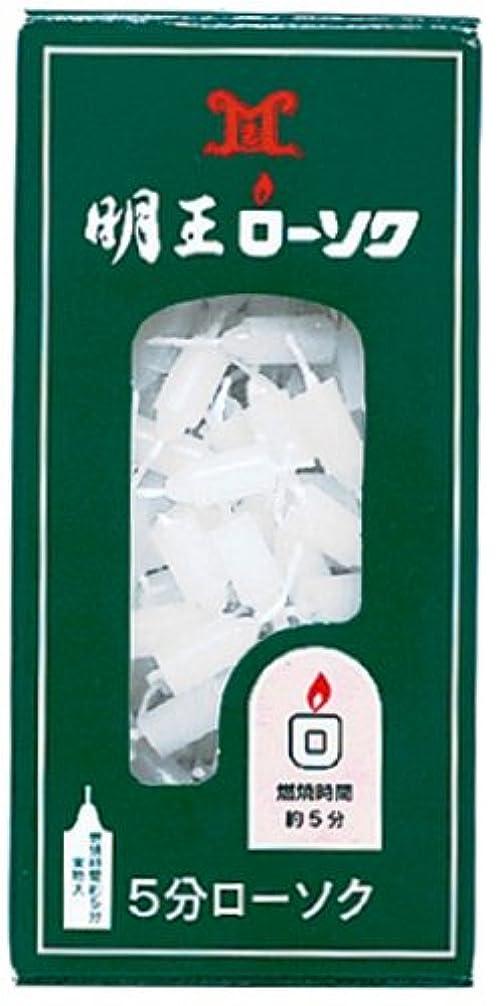 ボランティア課税乳剤マルエス 明王ローソク 5分ローソク 90g