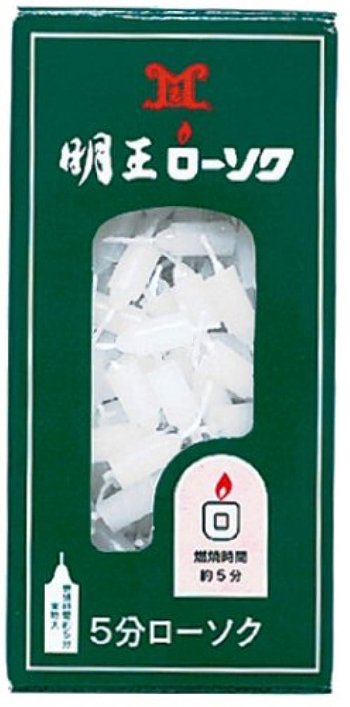 常習的はっきりときらめくマルエス 明王ローソク 5分ローソク 90g