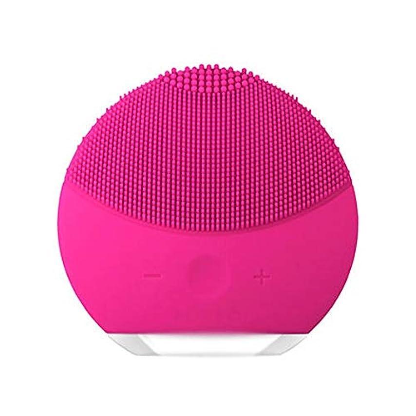 宮殿通信網決めますHEHUIHUI- クレンジングブラシ、ディープクレンジングフェイシャル、防水性と振動性のクレンジングブラシ、アンチエイジング、優しい角質除去とマッサージ(ピンク) (Color : Red)