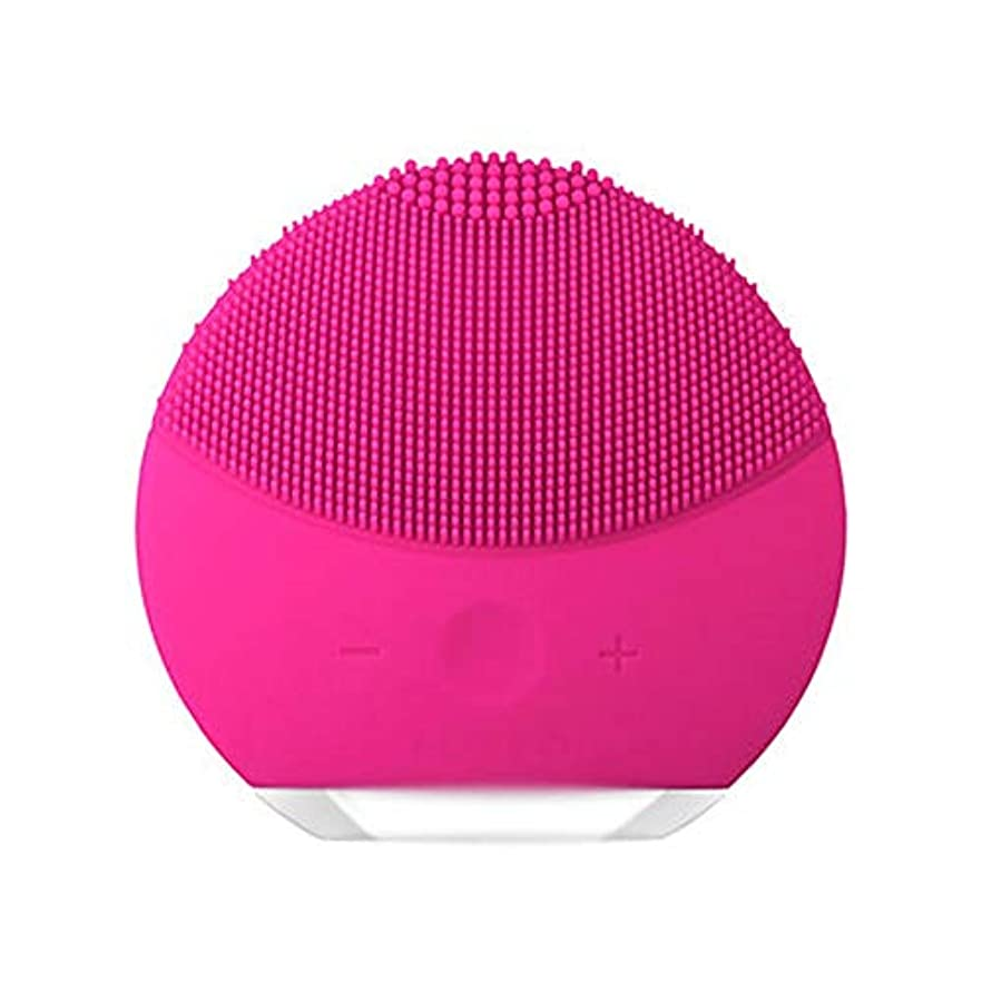 請うおとこ援助HEHUIHUI- クレンジングブラシ、ディープクレンジングフェイシャル、防水性と振動性のクレンジングブラシ、アンチエイジング、優しい角質除去とマッサージ(ピンク) (Color : Red)